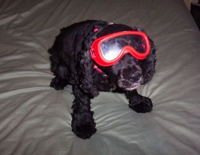 Joy In Her New Goggles